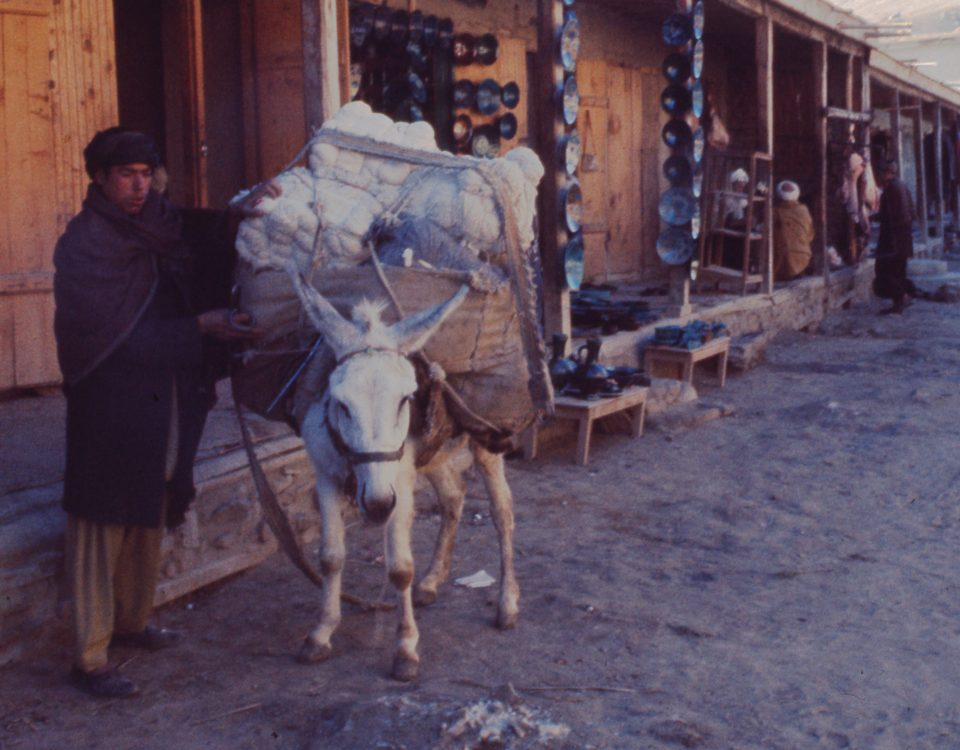 A vendor loads his donkey with wares to bring to market in Istalif, Afghanistan. Circa 1974